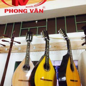 Đàn măng đô lin Phong Vân