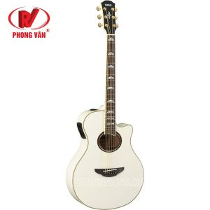 Đàn Acoustic Guitar APX1000 Series