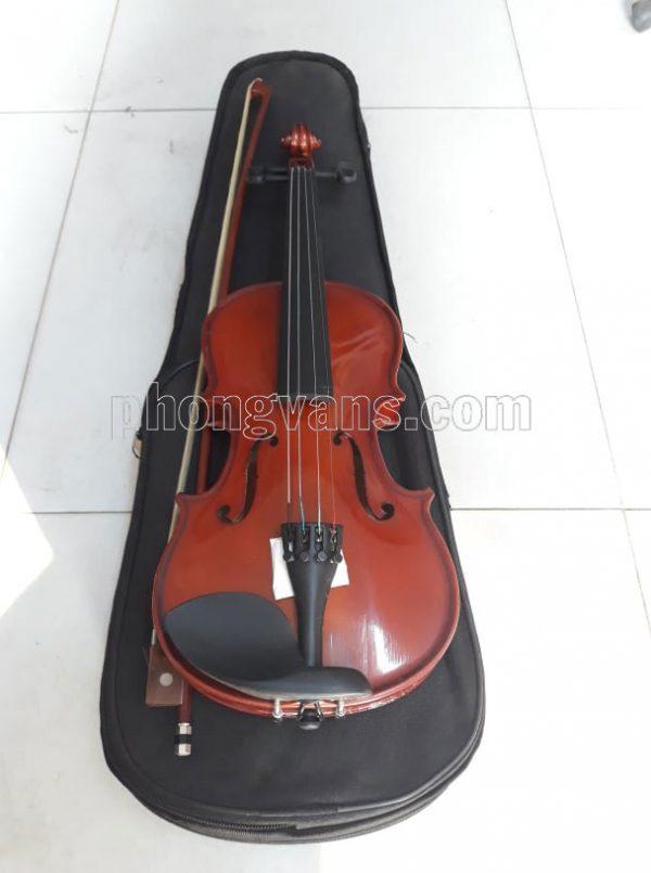 Đàn violin size 1/4 gỗ thường