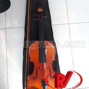 Đàn vĩ cầm violin ¾ loại thường