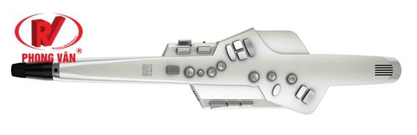 Aerophone Roland AE-10