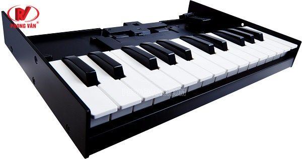 Bộ bàn phím Roland K-25M