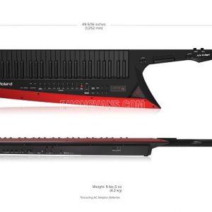 Đàn Synthesizer AX-EDGE-B