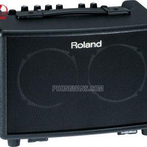 Bộ Amplifier cho guitar thùng Roland AC-33