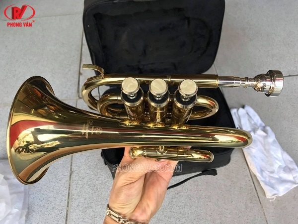 Kèn trumpet lùn Yamaha vàng