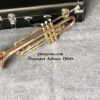 Kèn Trumpet Selmer TR650