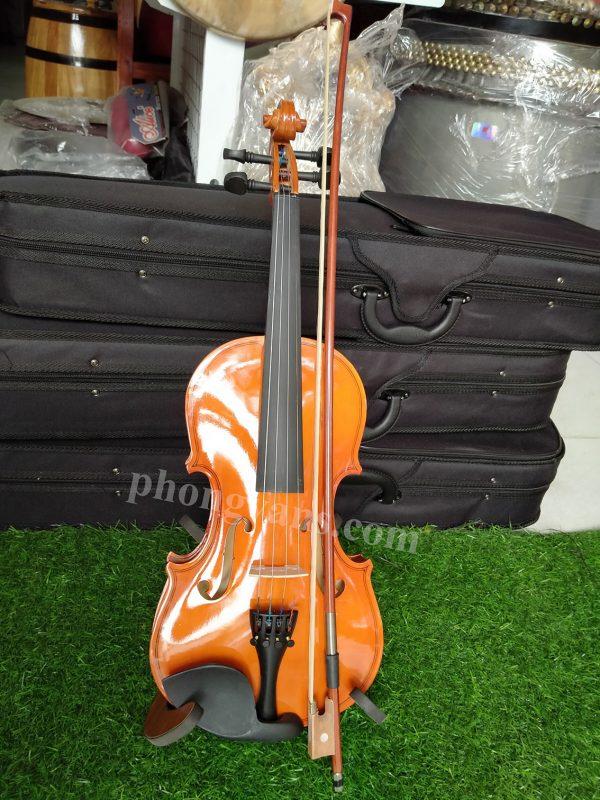 Đàn violin size 3/4 dành cho người mới học