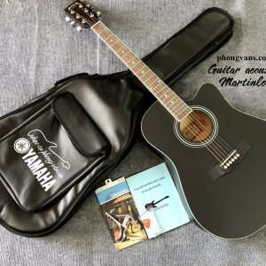 Đàn guitar acoustic Martinlee DR41