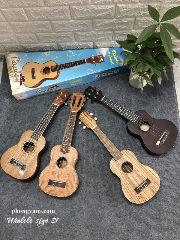 Chuyên bán sỉ ukulele giá rẻ