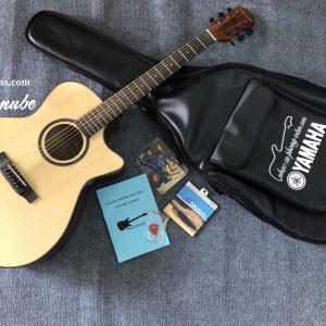 Đàn Guitar Acoustic G-Danube