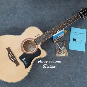 acoustic Rosen R135 dáng khuyết