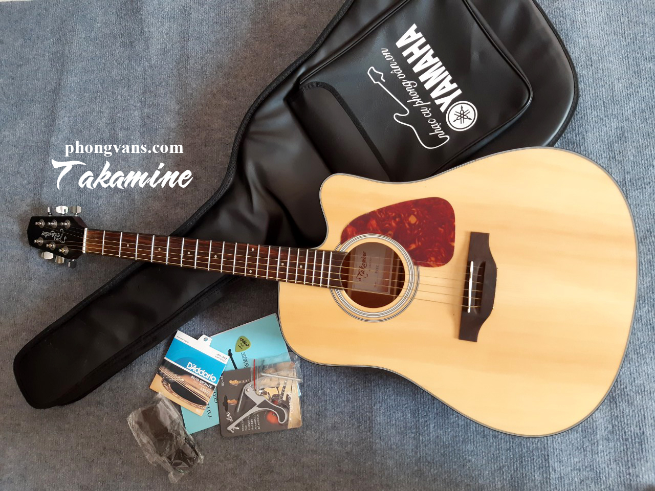 Guitar acoustic Takamine D10C