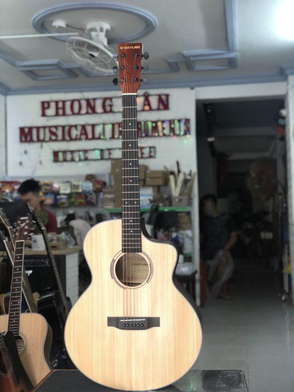 Guitar Acoustic G-Danube
