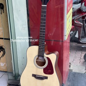 guitar acoustic Takamine GD15C