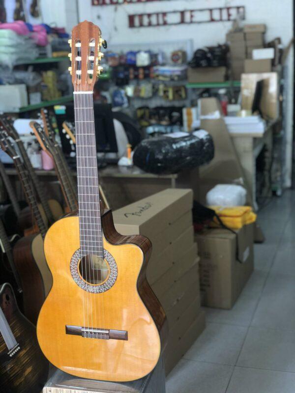 Đàn guitar classic Tagima